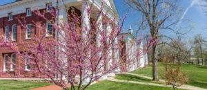Colonnade in Spring